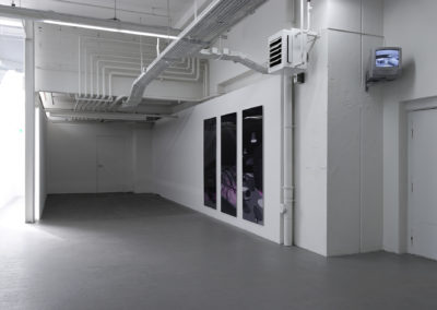 Just around the corner, Kunsthaus Baselland, Basel, CH, 2007