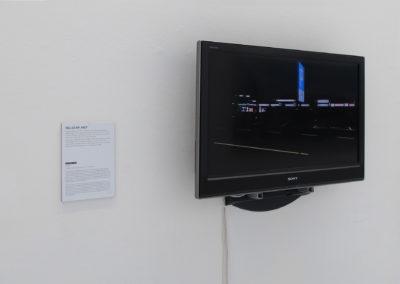 distURBANces, MUSA Museum Start Gallery Artothek, Vienna, AT, 2012